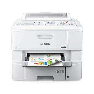 ecoprint-03