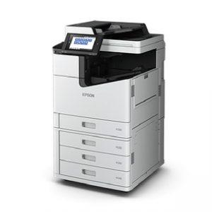 ecoprint-04